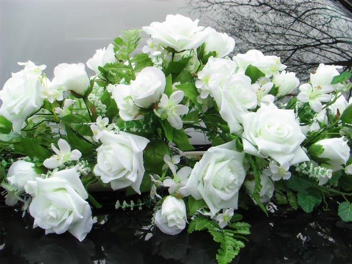 белые розы фото – 19