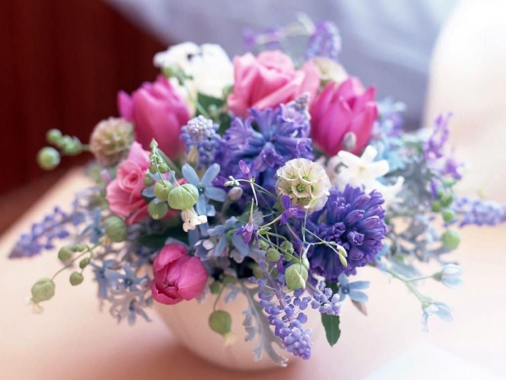 Красивые цветы с росой картинки