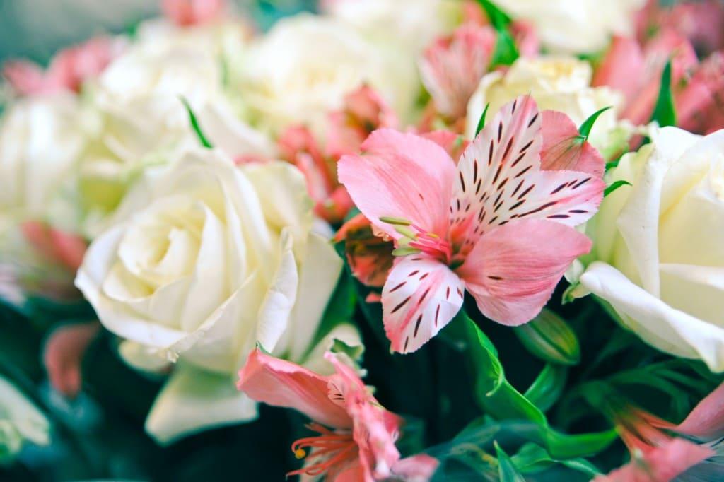 Доставка цветов на дом по Москве и России  купить букеты