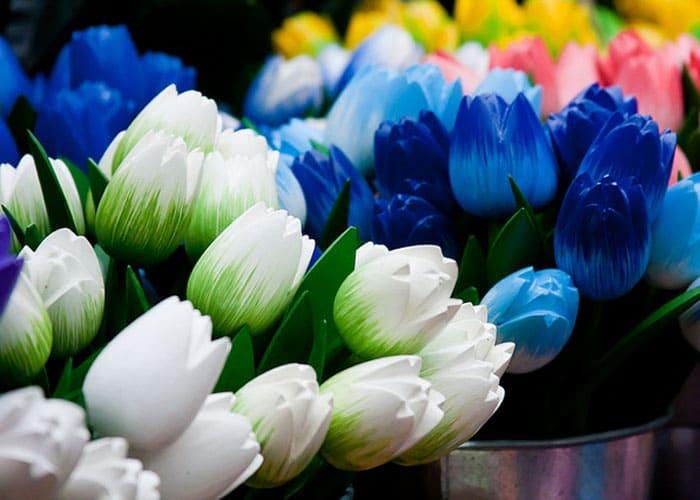 тюльпаны фото – 27
